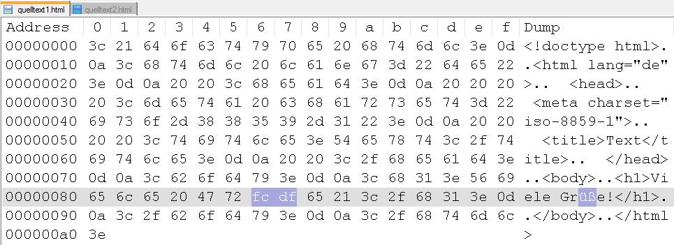 Hexeditor Datei 1 (in Notepad++)