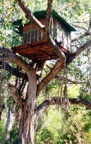Kerala-Baumhaus
