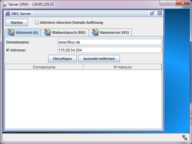 DNS-Software installieren